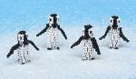 Pack of Penguins